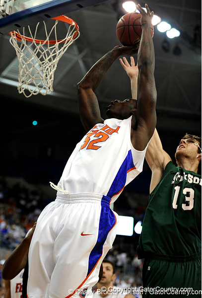 Photo Gallery: UF Men's Basketball vs. Stetson, 11/15/09