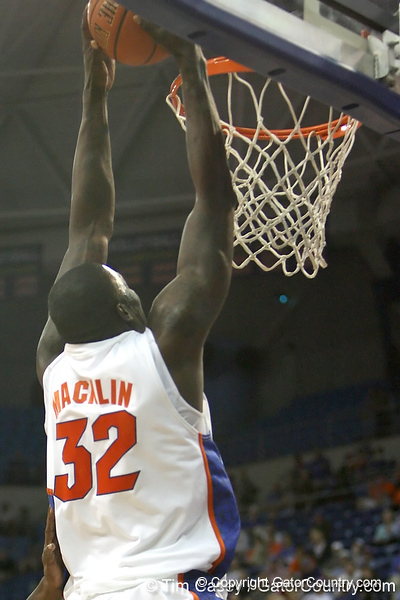 Florida redshirt junior forward/center Vernon Macklin slams in two points during the Gators' 69-49 win against Georgia Southern on Wednesday, November 18, 2009 at the Stephen C. O'Connell Center in Gainesville, Fla. / photo by Tim Casey