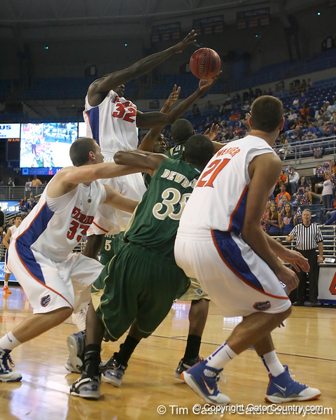 Florida redshirt junior forward/center Vernon Macklin grabs a rebound during the Gators' 95-46 exhibition game win against the St. Leo Lions on Monday, November 2, 2009 at the Stephen C. O'Connell Center in Gainesville, Fla. / Gator Country photo by Tim Casey