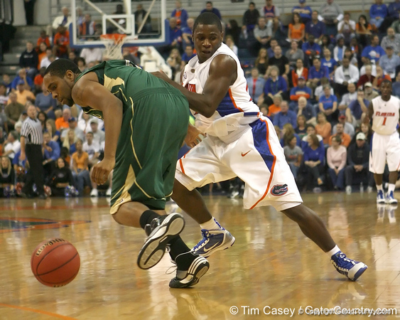 Florida sophomore guard Erving Walker goes for a loose ball during the Gators' 95-46 exhibition game win against the St. Leo Lions on Monday, November 2, 2009 at the Stephen C. O'Connell Center in Gainesville, Fla. / Gator Country photo by Tim Casey