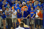 Rowdy Reptiles cheering on during the first half as the Florida Gators defeat the LSU Tigers 68-62 at the Stephen C. O'Connell Center.  January 9th, 2016. Gator Country photo by David Bowie.