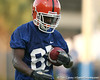080804_HammondJrFrankie_1985_TCasey<br /> <br /> photo by Tim Casey<br /> <br /> during the Florida Gators' first day of fall football practice on Monday, August 4, 2008 at the Sanders football practice fields in Gainesville, Fla. Only freshman participated in the morning session.