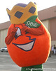 photo by Tim Casey<br /> <br /> Orange Bowl mascot Obie poses for a photo after the Gators arrived for the BCS Championship Game on Friday, January 2, 2009 at Fort Lauderdale-Hollywood International Airport in Fort Lauderdale, Fla.
