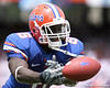 photo by Tim Casey<br /> <br /> during the first half of the Gators' season opener against the Hawaii Warriors on Saturday, August 30, 2008 at Ben Hill Griffin Stadium in Gainesville, Fla. Florida led 28-0 at halftime.