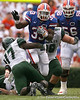 photo by Tim Casey<br /> <br /> during the second half of the Gators' 56-10 win against the Hawaii Warriors on Saturday, August 30, 2008 at Ben Hill Griffin Stadium in Gainesville, Fla. Florida led 28-0 at halftime.
