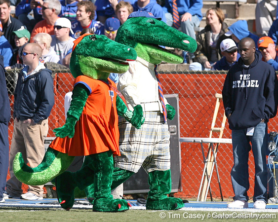 photo by Tim Casey<br /> <br /> Alberta and Albert perform before the Gators' 70-19 win against The Citadel Bulldogs on Saturday, November 22, 2008 at Ben Hill Griffin Stadium in Gainesville, Fla. UF led 49-6 at halftime.