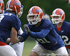photo by Tim Casey<br /> <br /> Aaron Hernandez blocks during the Gators' second day of spring football practice on Friday, March 27, 2009 at the Sanders football practice fields in Gainesville, Fla.
