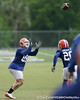 photo by Tim Casey<br /> <br /> Florida junior tight end Aaron Hernandez catches a pass from Tim Tebow during the Gators' second day of spring football practice on Friday, March 27, 2009 at the Sanders football practice fields in Gainesville, Fla.