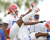 photo by Tim Casey<br /> <br /> Brandon Spikes warms up during the Gators' first day of spring football practice on Wednesday, March 25, 2009 at the Sanders football practice fields in Gainesville, Fla.