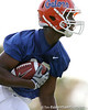 photo by Tim Casey<br /> <br /> Desmond Parks works out during the Gators' first day of spring football practice on Wednesday, March 25, 2009 at the Sanders football practice fields in Gainesville, Fla.