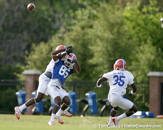photo by Tim Casey<br /> <br /> Frankie Hammond, Jr. attempts to catch a pass during the Gators' first day of spring football practice on Wednesday, March 25, 2009 at the Sanders football practice fields in Gainesville, Fla.