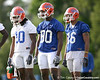 photo by Tim Casey<br /> <br /> Will Hill and Desmond Parks look on during the Gators' first day of spring football practice on Wednesday, March 25, 2009 at the Sanders football practice fields in Gainesville, Fla.