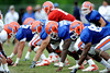 True freshmen Desmond Parks (80) and Jonotthan Harrison (72) get set before the snap of the ball as The University of Florida football team holds their third Spring practice on Saturday, March 28, 2009 in Gainesville, Fla. / Gator Country photo by Staff
