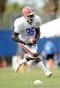 Ahmad Black works out as the University of Florida football team holds their third Spring practice on Saturday, March 28, 2009 in Gainesville, Fla. / Gator Country photo by Staff