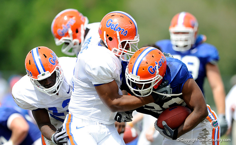 Jon Bostic and Dee Finley keep up their strong play in the early part of the spring as the two combine on the tackle as The University of Florida football team holds their third Spring practice on Saturday, March 28, 2009 in Gainesville, Fla. / Gator Country photo by Staff