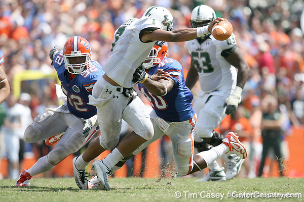 Florida senior linebacker Brandon Hicks pressures B.J. Daniels during the second half of the Gators' 38-14 win against the South Florida Bulls on Saturday, September 11, 2010 at Ben Hill Griffin Stadium in Gainesville, Fla. / Gator Country photo by Tim Casey