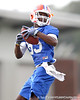 Florida redshirt sophomore wide receiver Frankie Hammond, Jr. works out during the Gators' first day of spring practice on Wednesday, March 17, 2010 at the Sanders football practice fields in Gainesville, Fla. / Gator Country photo by Tim Casey