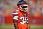 Florida DB Kerollin Francois.  2014 Orange and Blue Debut.  April 12th, 2014. Gator Country photo by David Bowie.