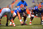 Florida center Trip Thurman lines up for the snap.  2014 Orange and Blue Debut.  April 12th, 2014. Gator Country photo by David Bowie.
