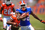 Florida WR Alvin Bailey makes the grab and sprints downfield.  2014 Orange and Blue Debut.  April 12th, 2014. Gator Country photo by David Bowie.