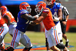 Florida OL Chaz Green blocking Florida DL Jordan Sherit.  2014 Orange and Blue Debut.  April 12th, 2014. Gator Country photo by David Bowie.