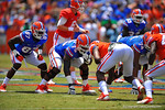 Florida OL Chaz Green and Florida TE Tevin Westbrook at the line.  2014 Orange and Blue Debut.  April 12th, 2014. Gator Country photo by David Bowie.