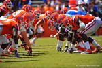 The two lines get set for the snap.  2014 Orange and Blue Debut.  April 12th, 2014. Gator Country photo by David Bowie.