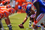 Florida OL Max Garcia sets the ball and eyes the defense before the snap.  2014 Orange and Blue Debut.  April 12th, 2014. Gator Country photo by David Bowie.