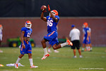 Florida Gator WR Raphael Andrades leaps into the air to make the catch during practice.  August 7th, 2014. Gator Country photo by David Bowie.
