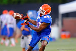 Florida WR Raphael Andrades eyes the ball in for a catch during practice.  August 7th, 2014. Gator Country photo by David Bowie.