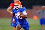 Florida Gator WRAlvin Bailey sprints downfield following a catch during practice.  August 7th, 2014. Gator Country photo by David Bowie.