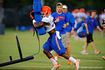 Florida Gator DB Marcus Maye hits the sled during a practice drill.  August 7th, 2014. Gator Country photo by David Bowie.