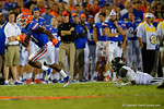Florida Gators running back Kelvin Taylor rushes downfield as Missouri Tigers safety Ian Simon watches on after attempting a diving tackle.  Florida Gators vs Missouri Tigers.  October 18th, 2014. Gator Country photo by David Bowie.