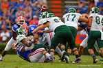 Florida Gators defensive lineman Caleb Brantley and Florida Gators defensive lineman Joey Ivie combine for the tackle that causes the ball to come loose.  Florida Gators vs Eastern Michigan Eagles.  September 6th, 2014. Gator Country photo by David Bowie.