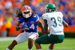 Florida Gators running back Matt Jones jukes to try to avoid Eastern Michigan defensive back Jason Beck.  Florida Gators vs Eastern Michigan Eagles.  September 6th, 2014. Gator Country photo by David Bowie.