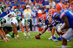 The Florida Gators offense and the Eastern Michigan defense await the snap.  Florida Gators vs Eastern Michigan Eagles.  September 6th, 2014. Gator Country photo by David Bowie.