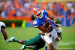 Florida Gators tight end Clay Burton makes the catchand is tackled by an Eastern Michigan defender.  Florida Gators vs Eastern Michigan Eagles.  September 6th, 2014. Gator Country photo by David Bowie.