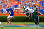 Florida Gators quarterback Jeff Driskel scrambles out of the pocket and downfield.  Florida Gators vs Eastern Michigan Eagles.  September 6th, 2014. Gator Country photo by David Bowie.