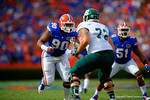 Florida Gators defensive lineman Jonathan Bullard rushes upfield trying to get around Eastern Michigan offensive lineman Andrew Wylie.  Florida Gators vs Eastern Michigan Eagles.  September 6th, 2014. Gator Country photo by David Bowie.