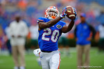 Florida Gators running back Darius Masline makes an over the shoulder catch during pre-game warmups.  Florida Gators vs Eastern Michigan Eagles.  September 6th, 2014. Gator Country photo by David Bowie.