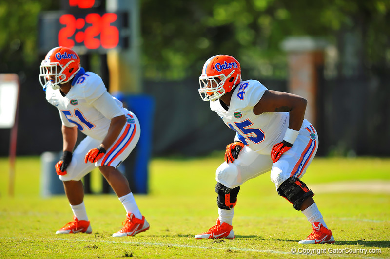 DL Antonio Riles and LB Michael Taylor line up for a defensive drill.  Florida Gators Spring Practice 2014.  March 26st, 2014.  Gator Country photo by David Bowie.