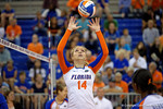 Florida Gators Volleyball player Abby Detering sets a ball during pre-game warm ups. Florida Gators Volleyball vs Mississippi State Bulldogs.  October 26th, 2014. Gator Country photo by David Bowie.