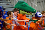 Albert leads the student section in a gator chomp for the television network.  Florida Gators Volleyball vs Mississippi State Bulldogs.  October 26th, 2014. Gator Country photo by David Bowie.