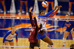 Florida Gators Volleyball player Rhamat Alhassan leaps up for the ball against Mississippi State's Shelby Anderton.  Florida Gators Volleyball vs Mississippi State Bulldogs.  October 26th, 2014. Gator Country photo by David Bowie.