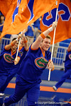 The University of Florida cheerleaders lead the Florida Gators onto the floor before the start of the game.  Florida Gators Volleyball vs Mississippi State Bulldogs.  October 26th, 2014. Gator Country photo by David Bowie.