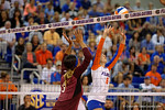 Florida Gators Volleyball player Mackenzie Dagostino sets a ball during the first set.  Florida Gators Volleyball vs Mississippi State Bulldogs.  October 26th, 2014. Gator Country photo by David Bowie.