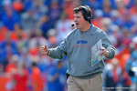 Florida Gators Head Coach Will Muschamp coaches up his team from the sideline during the second quarter.  Florida Gators vs South Carolina Gamecocks.  November 14th, 2014. Gator Country photo by David Bowie.
