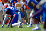 Florida Gators Head Coach Will Muschamp watches on from the sideline during the first quarter.  Florida Gators vs South Carolina Gamecocks.  November 14th, 2014. Gator Country photo by David Bowie.