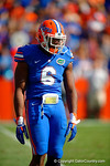 Florida Gators defensive lineman Dante Fowler, Jr. awaits play to resume by dancing during a timeout in the second quarter.  Florida Gators vs South Carolina Gamecocks.  November 14th, 2014. Gator Country photo by David Bowie.