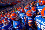 The Florida Gators take the field for the start of the game.  Florida Gators vs South Carolina Gamecocks.  November 14th, 2014. Gator Country photo by David Bowie.